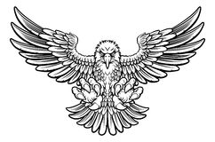 Eagle feroce Fotografie Stock