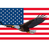 Eagle flag USA. Eagle on a background of the flag USA Royalty Free Stock Image