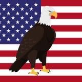 Eagle Flat Design Vector Illustration chauve Images libres de droits