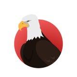 Eagle Flat Design Vector Illustration chauve Photos libres de droits