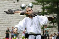 Eagle-Fliegen Lizenzfreie Stockfotografie