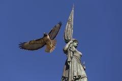 Eagle-Fliegendurchlauf durch Statue Lizenzfreie Stockbilder