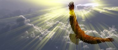 Eagle in flight above the clouds. Sunset or sunrise royalty free illustration