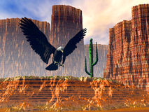 Eagle flight over the desert Royalty Free Stock Photos