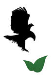 The eagle and flower. The eagle hover a flower in the wall Stock Photography