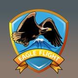 Eagle flyg Arkivbilder