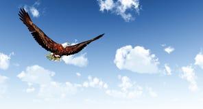 Eagle royalty free illustration