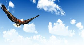 Eagle flying on a background of the  blue sky. 3D rendering Stock Photo