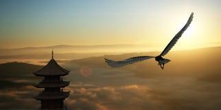 Eagle flying Stock Image