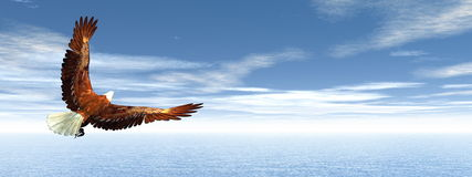 Eagle flying - 3D render. Eagle flying upon ocean by day - 3D render Royalty Free Stock Photography