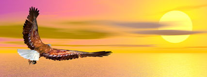 Eagle flying - 3D render Stock Photo