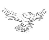 Eagle flying Royalty Free Stock Photography