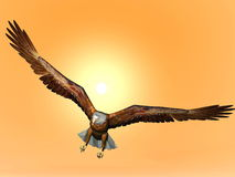 Eagle by sunset - 3D render. Eagle flying in front of big sun Royalty Free Stock Image