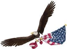 Eagle Flying Holding USA flagga Fotografering för Bildbyråer