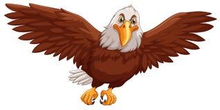 Eagle Flying On White Background Royalty Free Stock Photos