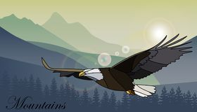 Eagle flying over the mountains. Vector illustration. royalty free illustration