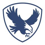 Eagle Flying Shield Royaltyfria Bilder