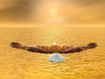 Eagle going to the sun - 3D render. Eagle flying to the sun by brown sunset over the ocean Royalty Free Stock Images