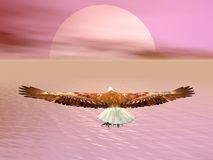 Eagle going to the sun - 3D render. Eagle flying to the sun by cloudy sunset over the ocean Stock Photography