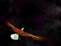 Eagle flying in the universe - 3D render Stock Images
