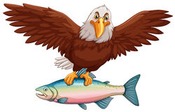 Eagle Flying With Fish In Claws Royalty Free Stock Image