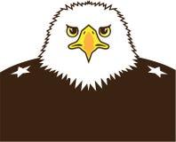 Eagle generał Zdjęcia Stock