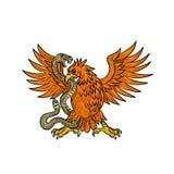 Eagle Grappling Rattlesnake Drawing dourado fotos de stock