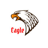Eagle or hawk head mascot with screaming bird Royalty Free Stock Images