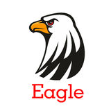 Eagle, hawk vector mascot emblem Stock Photography