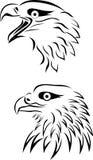 Eagle head. Illustration of eagle head tattoo Stock Image