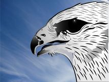 Eagle head blue sky symbol background illustration. Eagle head blue sky symbol background illustration   picture template image Royalty Free Stock Photos