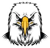 Eagle Head calvo illustrazione vettoriale