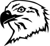 Eagle Head calvo Imagenes de archivo
