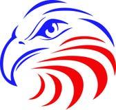 Eagle Head calvo Fotografie Stock Libere da Diritti