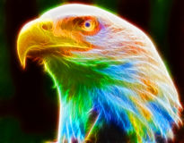 EAGLE HEAD COLOR FULL Royalty Free Stock Photography