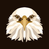 Eagle head face vector illustration style Flat Stock Photos