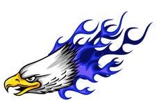 Illustration Eagle Head Flame Vector Template Design vector illustration