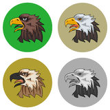 The eagle Royalty Free Stock Images