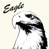 Eagle head hand drawn. Eagle sketch isolated background. Stylized haired inscription Eagle Stock Photography