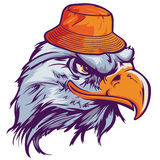 Eagle Head Illustration with hat Stock Photo