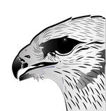 Eagle Head logo stock illustration