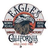 Eagle head logo vector Royalty Free Stock Photos