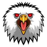 Eagle Head Mascot arrabbiato Immagini Stock