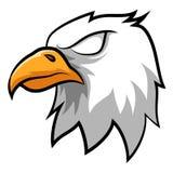 Eagle Head Mascot fâché Image libre de droits