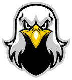 Eagle head mascot Stock Images