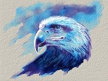 Eagle head portrait Royalty Free Stock Image