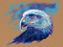 Eagle head portrait Stock Photos