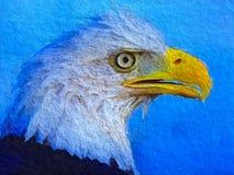 Eagle head portrait Stock Photography
