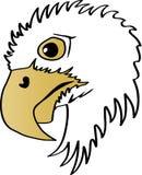 Eagle Head Profile Stock Afbeelding