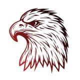 Eagle head in profile.  Line art style. Stock Photos